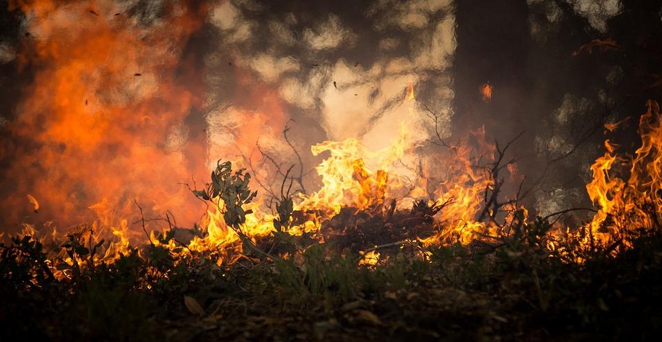 Incendi in Sicilia: previsti 45 milioni di euro per interventi di prevenzione e riduzione dei rischi