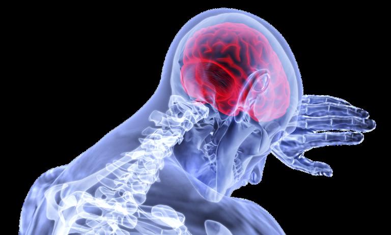 Le malattie cerebrovascolari: come prevenirle. Il documento del Ministero della salute