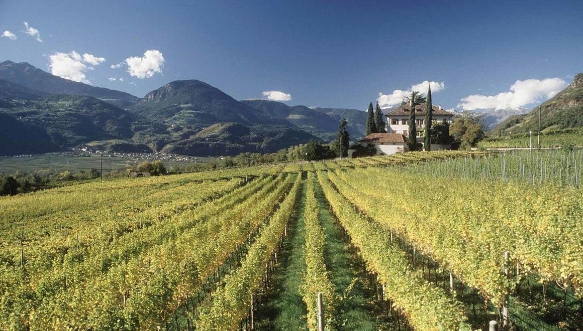 Alto Adige, 5 percorsi all'aria aperta alla scoperta delle meraviglie del territorio