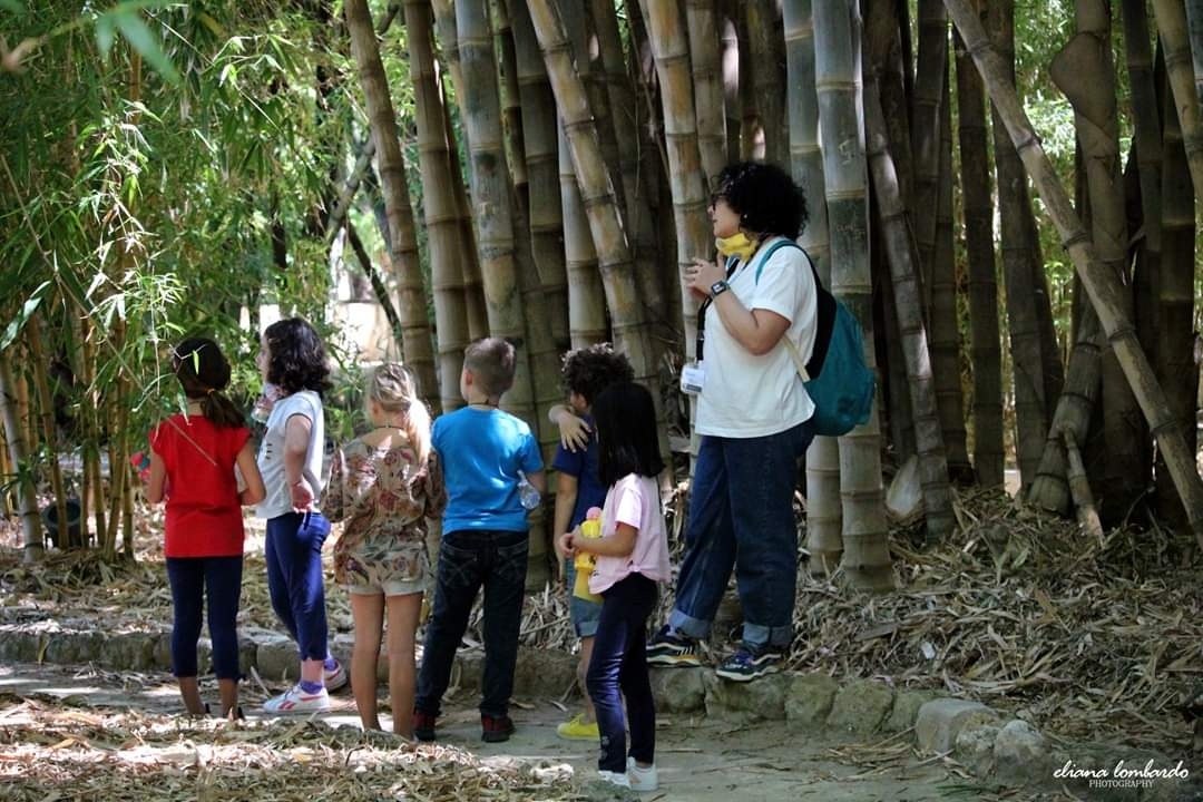 Bookshop d'arte e giochi creativi per bambini: l'estate green (e in sicurezza) all'Orto Botanico di Palermo