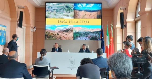 """""""La terra ai giovani"""": nuovo bando della Regione Sicilia per incentivare l'imprenditorialità agricola"""
